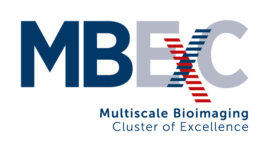 MBExC Multiscale Bioimaging Cluster of Ecellence
